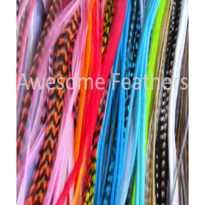 6 XXL Mixed Fjer 26-35cm